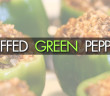 099 - Stuffed green peppers